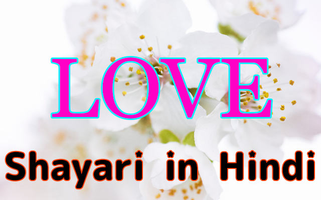 Love Shayari in Hindi - Top 199+ Shayari for Whatsapp Status & FB Status